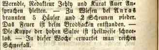 Salzburger Chronik, Nr. 12, Jg XV, 28. Januar 1879, S. 2